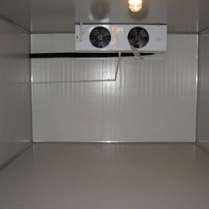 Fruit and Vegetable Storage Cold Room Frozen Food Storage Room pictures & photos