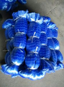 blue Fishing Nets (NO. 17) pictures & photos