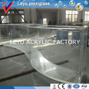Special Shape Acrylic Fish Tank Aquarium Project