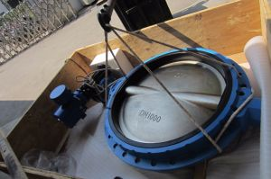 Butterfly Valve with Electric Actuator pictures & photos