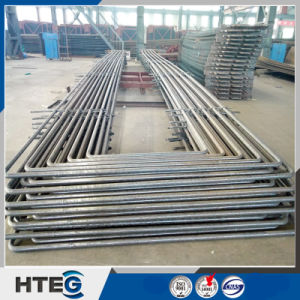 Snake Tube Superheater and Reheater for Industrial Boiler pictures & photos