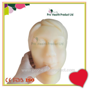 Head Face Bone Inside Surgery Suture Training Operation Practice Model pictures & photos