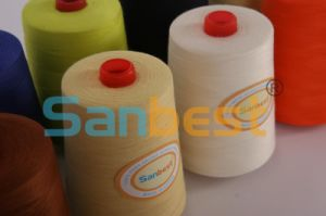 Fire-Retardant Sewing Thread pictures & photos
