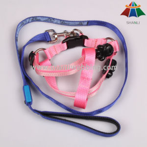 Nylon/ Polyester Pet Supply, Pet Harness and Lead Products, Dog Leash and Dog Collar pictures & photos
