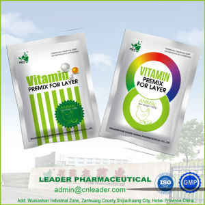 Vitamin Premix for Poultry Cattle Swine GMP Feed Additive