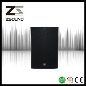 Zsound R10p 10 Inch Self-Powered PRO Audio Stage Speaker pictures & photos