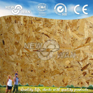 Oriented Strand Board OSB Board pictures & photos