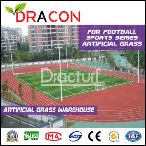 Artificial Football Grass Field Turf (G-4004) pictures & photos