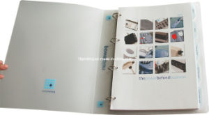 3-Hole Drilled Index Catalogue Printing with D-Ring Binder