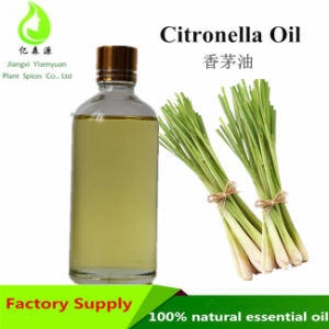 China Manufacturer Supply 100 Pure Natural Bulk Citronella Oil