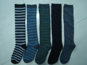 Ladies′ Socks (HGS5108)
