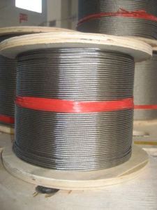 Stainless Steel Wire Rope (1*19)