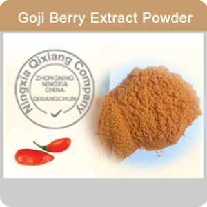 Ningxia Goji Berry Powder Whosale