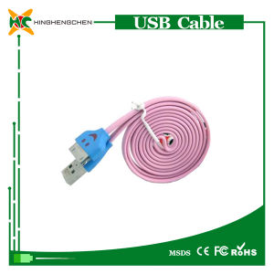 Cheap USB Data Cable for iPhone 4 Charger Cable pictures & photos