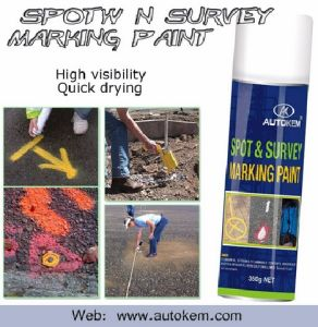 Inverted Marking Paint Use as Line Marking Paint for Road and Spot/Field Marker Aerosol Spray Free Sample pictures & photos