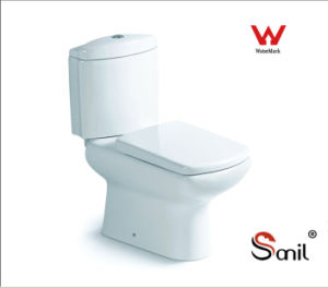 Good Sanitary Ware Ceramic Watermark Washdown Two Piece Toilet (S8000)