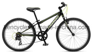 Hot Selling Mountain Bike/MTB Bike/Mountain Bike Bicycles/MTB Bicycles/Atb Bike/CTB Bike pictures & photos