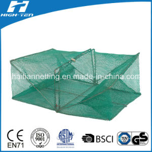 Square Green Color Crab Net/Fish Net (HT-SCN-05)