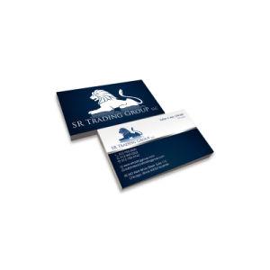 Diy Printed Video Brochure Digital Video Business Card