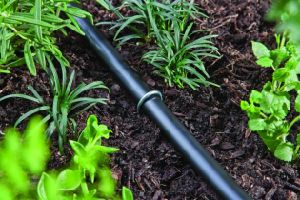 "Garden Staples - Professional Grade - Full 6"" Length - Durable 11 Gauge Metal Steel - (Also Called SOD Staples, Garden Spikes, Fence Anchors, Landscape Fabr pictures & photos"