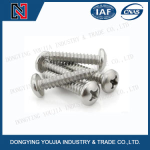 ISO7049 Stainless Steel Cross Recessed Pan Head Tapping Screw pictures & photos