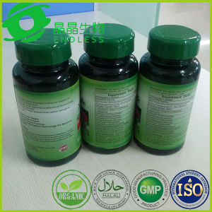 Medical Grade Lycium Extract Goji Berry Capsule pictures & photos