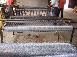 Specialized Production Hexagonal Wire Mesh pictures & photos