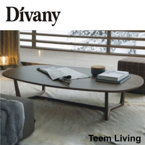 Living Room Furniture Wood Stainless Steel Coffee Table (T-57D) pictures & photos