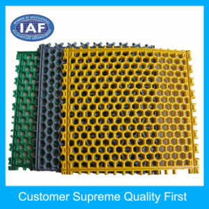 Honeycomb Series Floor Mat Plastic Extrusion Mould pictures & photos