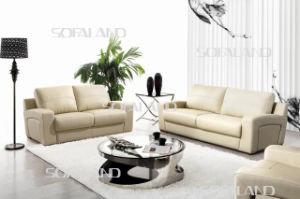Promotional Modern Leather Sofa (C642)