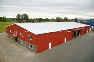Painted/Galvanized Steel Structure Building for Warehouse (DG3-041) pictures & photos