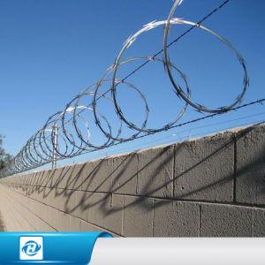 China Flat Razor Military Entanglement Concertina Wires /Cross ...