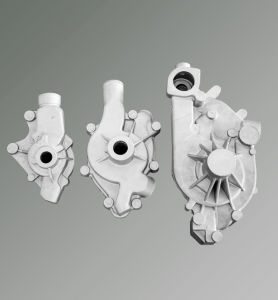 OEM/ODM Service Aluminum Gravity Casting Auto Water Pump Appliance pictures & photos