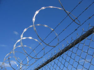 Best Sell of Razor Barbed Wire for Fencing pictures & photos