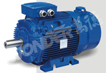 Wvf Series Three Phase Inverter Duty Asynchronous Motors