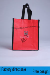 New Hot Promotion Non Woven Shopping Bag (M. Y. M-131)