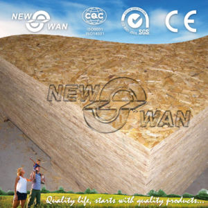 12mm WBP Glue OSB for Construction (NOSB-0068) pictures & photos