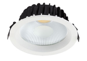 LED COB Down Light 15W 20W 25W 30W pictures & photos