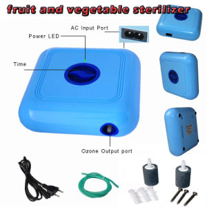 Portable 300mg/H Ozone Generator Air Water Purifier for Fruit Vegetables pictures & photos