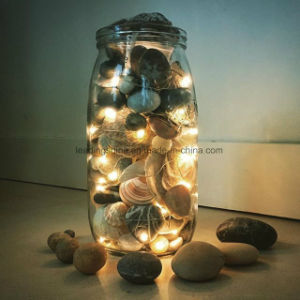 battery operated 20 led warm white seed light home indoor decor artificial diy copper string light