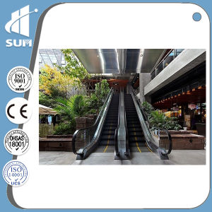 Speed 0.5m/S Stainless Steel Step Vvvf Indoor Escalator pictures & photos