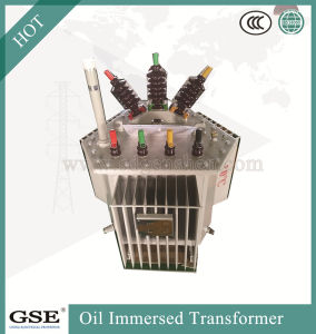 S11-Mr-L 30-2500 kVA Three-Phase Oil-Immersed Fully-Sealed Power/Distribution Transformer pictures & photos