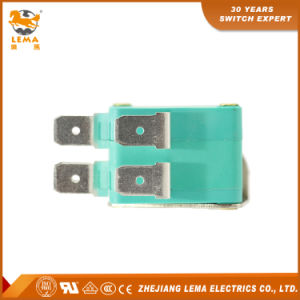 Lema Kw7-D2u Double CCC Ce UL VDE Micro Switch pictures & photos