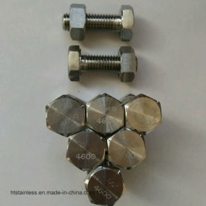 Hastelloy B3 Hex Head Bolt pictures & photos