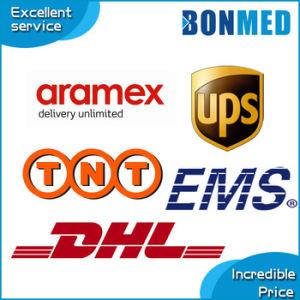 DHL/UPS/FedEx/TNT/EMS Courier Express Service