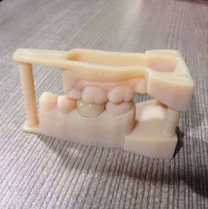 3 Shape/3D Print Product/Model Scan/Zirconia Crown and Bridge/Full Zirconia