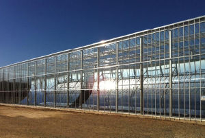 Large Economical Glass Greenhouse/ Agricultural Greenhouse with Ventilation System pictures & photos