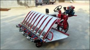 High Quality Seedling Planting Machine with Factory Price.