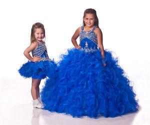 Free Shipping Plus Size Puffy Flower Girl Dresses (xye-137)