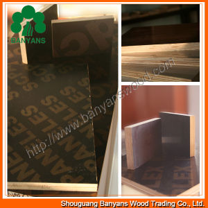 High Quality Low Price Logo Black Film Faced Plywood